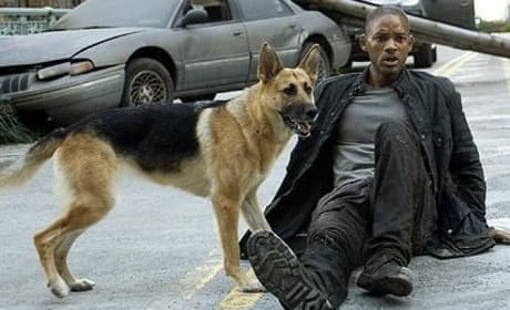 I Am Legend Sequel on its Way