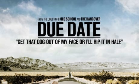 Due Date Dog Poster