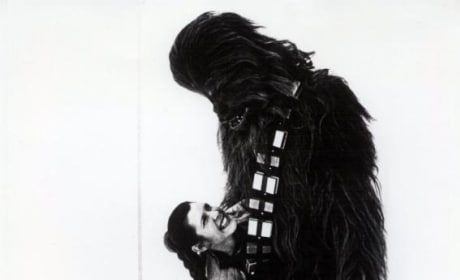Star Wars: Leia & Chewbacca