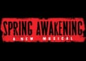 McG in Talks to Direct Spring Awakening Movie