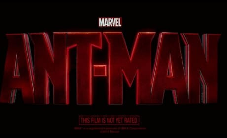 Ant-Man Reveals Ant-Sized Teaser Trailer: When Does Real Trailer Debut?