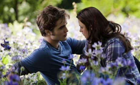 Breaking Dawn Part 2 Gets a Release Date