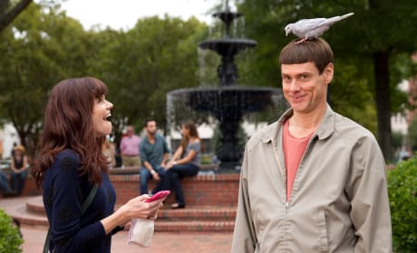 Jim Carrey Dumb and Dumber To