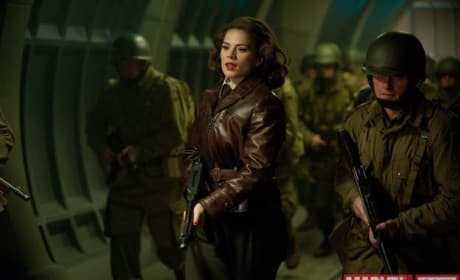 Captain America: The Winter Soldier Will Not Feature Hayley Atwell