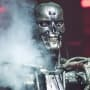 Pic of a Terminator