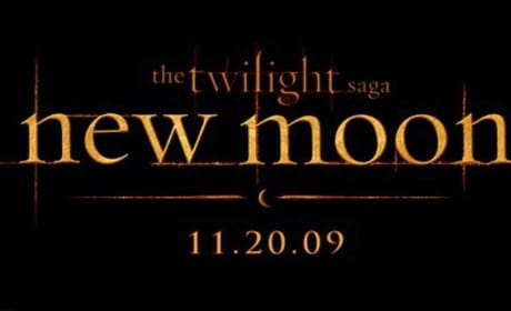 New Moon Art, Official Logo: Released!