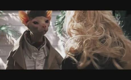 Seven Psychopaths Joke Trailer: PsychoCats