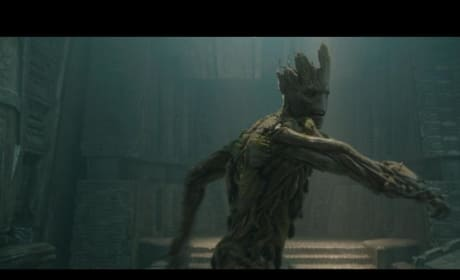 Guardians of the Galaxy Groot Still