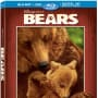 Bears DVD Review: Beary, Beary Good!