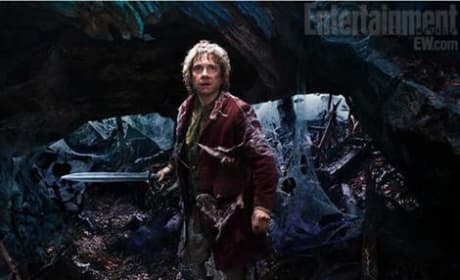 The Hobbit To Become a Trilogy? Peter Jackson in Talks to Shoot 3rd Film