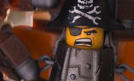 The LEGO Movie Metalbeard