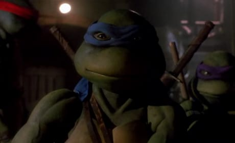Teenage Mutant Ninja Turtles Michaelangelo Still