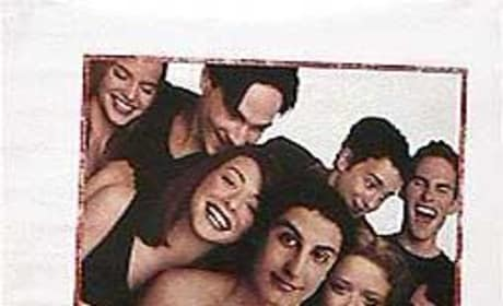 American Pie Sequel: Bringing Back All the Original Cast?