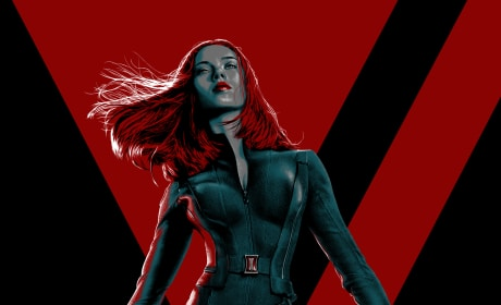 Captain America The Winter Soldier IMAX Scarlett Johansson Poster