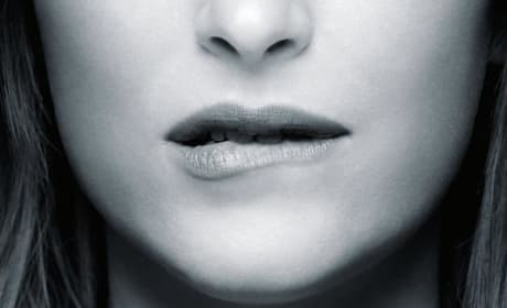 Fifty Shades of Grey Poster: Anastasia Steele Gets Hot