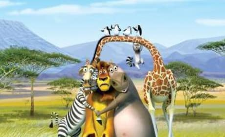 New on DVD: Madagascar: Escape 2 Africa, Zack and Miri Make a Porno, Nick and Norah's Infinite Playlist, The Secret Life of Bees