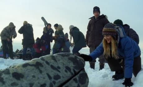 Drew Barrymore in Big Miracle