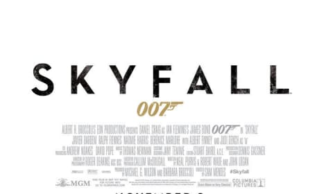 Skyfall Theme Song Will be Performed by Adele: Plus a New Poster!
