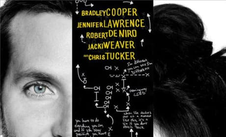 Silver Linings Playbook Poster Drops: Ready, Break!