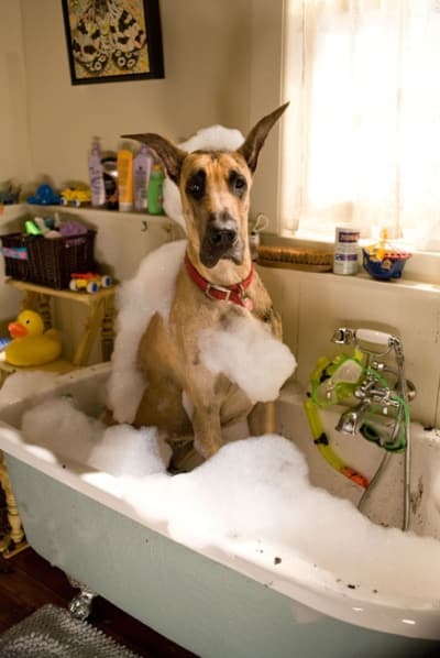You Can Find Me in Da Tub