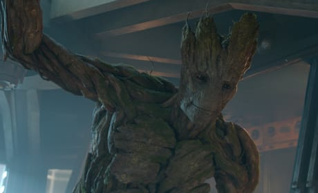 Guardians of the Galaxy: Vin Diesel Talks Life As a Tree