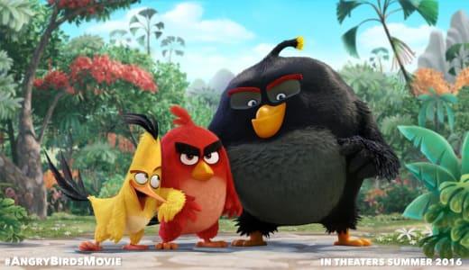 Angry Birds Movie Still