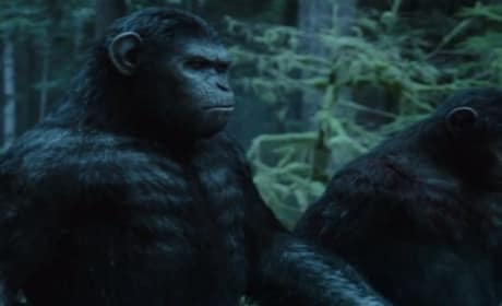 Dawn of the Planet of the Apes International Trailer: Fresh Footage!