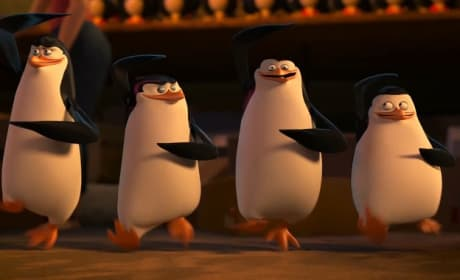11 Most Memorable Penguins of Madagascar Quotes: You Just Mermaid My Day!