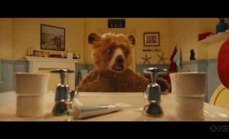 Paddington Trailer: Small Bear, Big Splash!