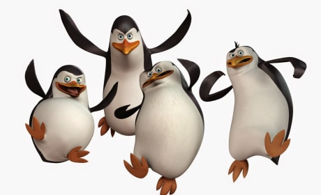 The Penguins of Madagascar Cast