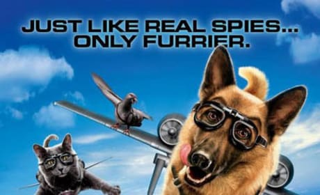 Cats and Dogs Just Like Real Spies Only Furrier Poster