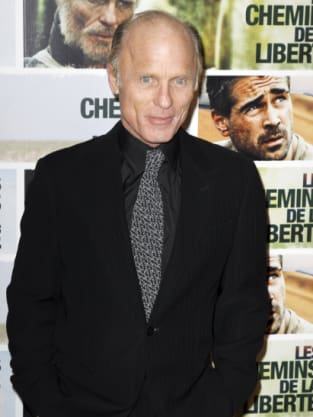 Veteran Actor Ed Harris
