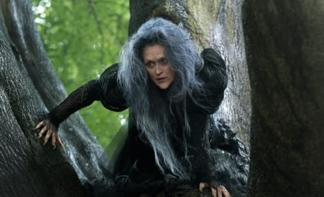 Into the Woods First Photo: Meryl Streep Is a Witch!