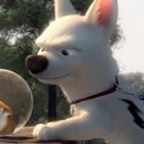 Bolt Photo
