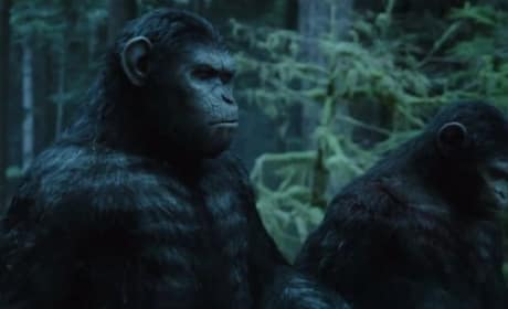 Dawn of the Planet of the Apes Still Photo
