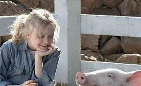 Wilbur Picture