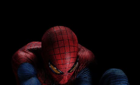 Spider-Man Reboot Has a Title: The Amazing Spider-Man!