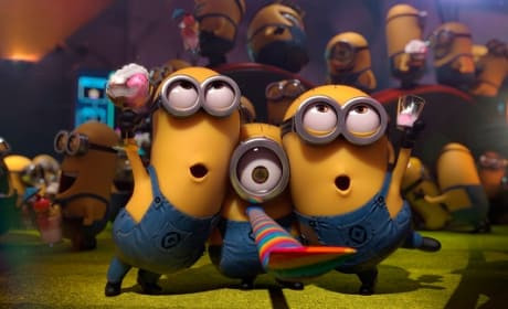 Despicable Me 2 The Minions
