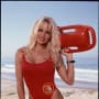 Pamela Anderson Picture