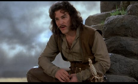 Mandy Patinkin Stars The Princess Bride