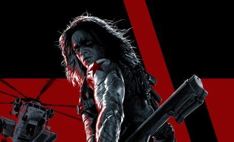 Captain America The Winter Soldier IMAX Sebastian Stan Poster