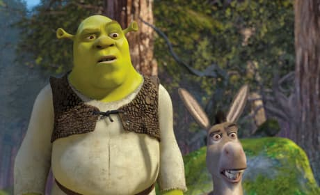 Shrek and Donkey Photo