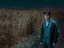 Angry Harry, Dark Corn Field