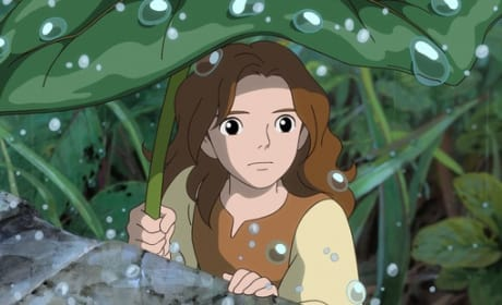 Bridgit Mendler in The Secret World of Arrietty