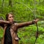 The Hunger Games Movie Review: Hungry for More