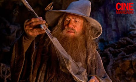 Gandalf The Hobbit Still
