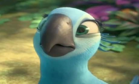 Rio 2 Trailer: Popping in the Amazon