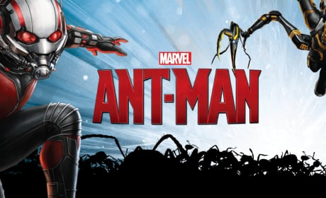 Ant-Man Banner Reveals Yellowjacket!