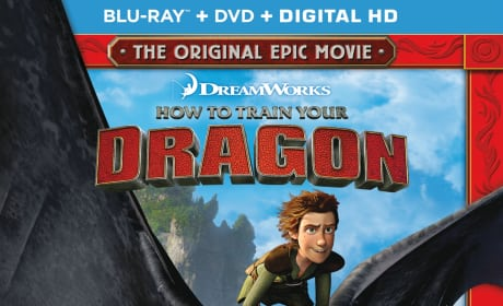 How to Train Your Dragon Collector's Edition DVD Review: An Animation Must-Own!