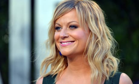 Amy Poehler Red Carpet Picture